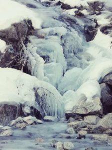 Articolate composizioni ghiacciate