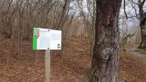 La segnaletica del percorso Botanico