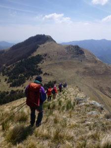 Panorama verso il monte Arborea a destra e il Carmo di Brocchi a sinistra